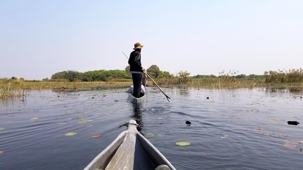 Wild Dog Safaris - Okavango Delta, Botswana - Mokoro canoeing