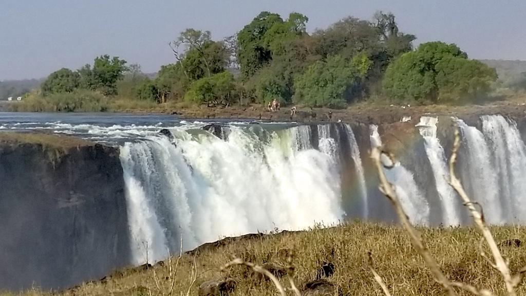 Wild Dogs Safari Victoria Falls - Devil's Pond