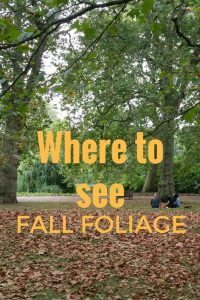 Where to see the Fall Foliage